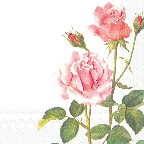 Lunch Napkin ~ Pink Rose