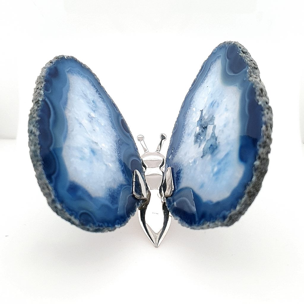blue agte butterfly