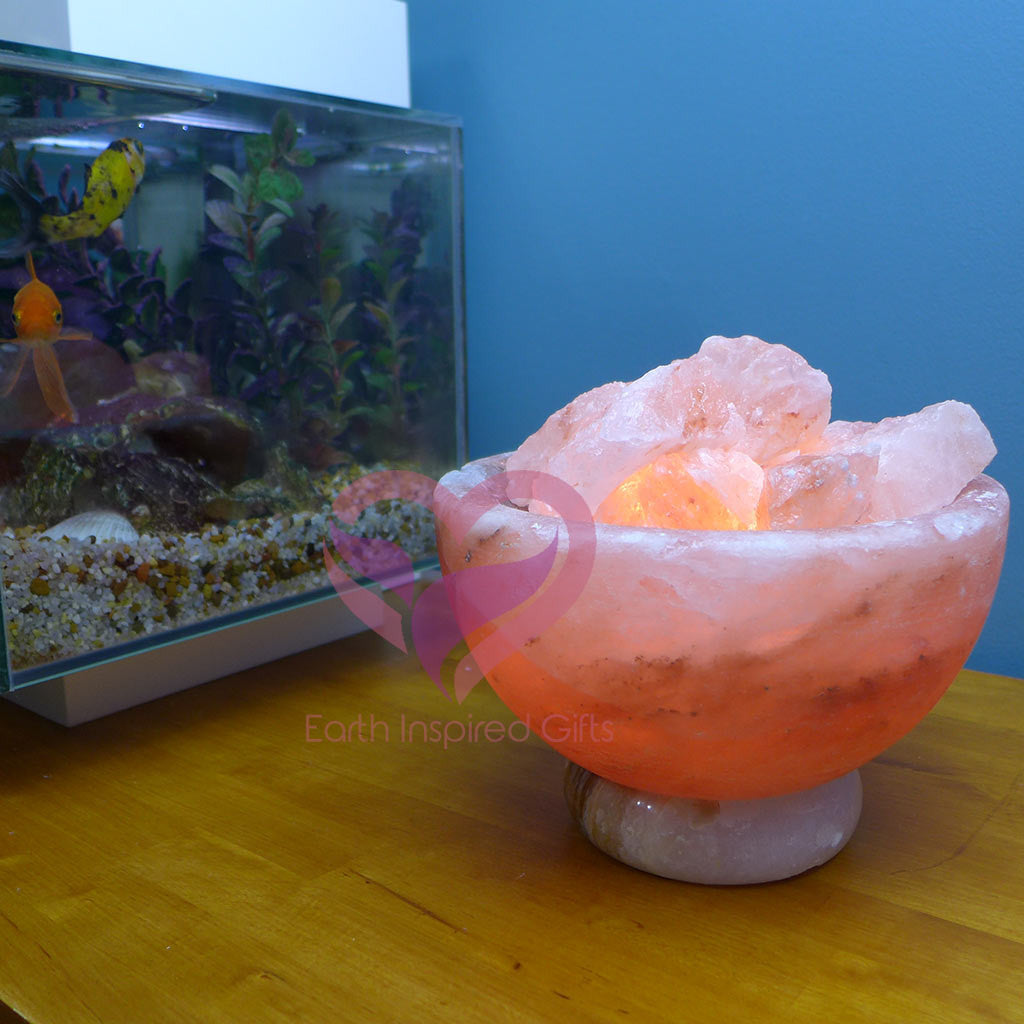 Carved Himalayan Salt Fire Bowl Lamp