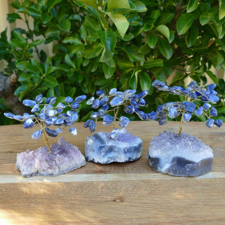 sodalite crystal gem tree