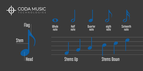 how to read piano music notes on the staff stems note parts
