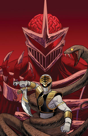 Mighty Morphin Power Rangers #24 1/30 Dan Mora Virgin Art Variant