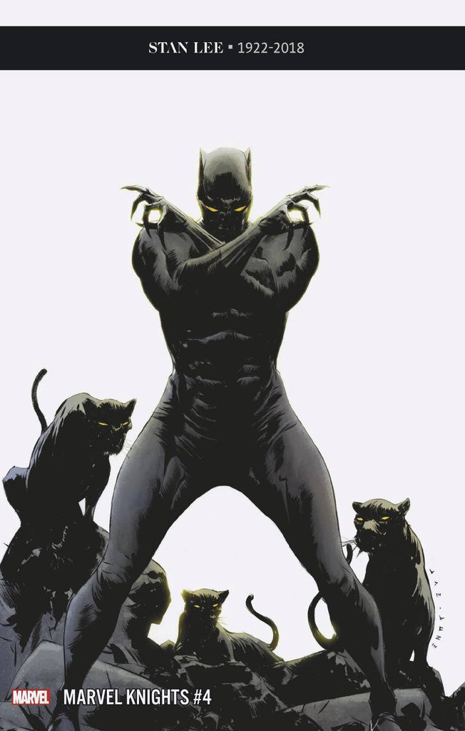 Marvel Knights 20th #4 1/25 Jae Lee Black Panther Variant