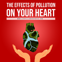 The Effects of Your Pollution on Your Heart and Health