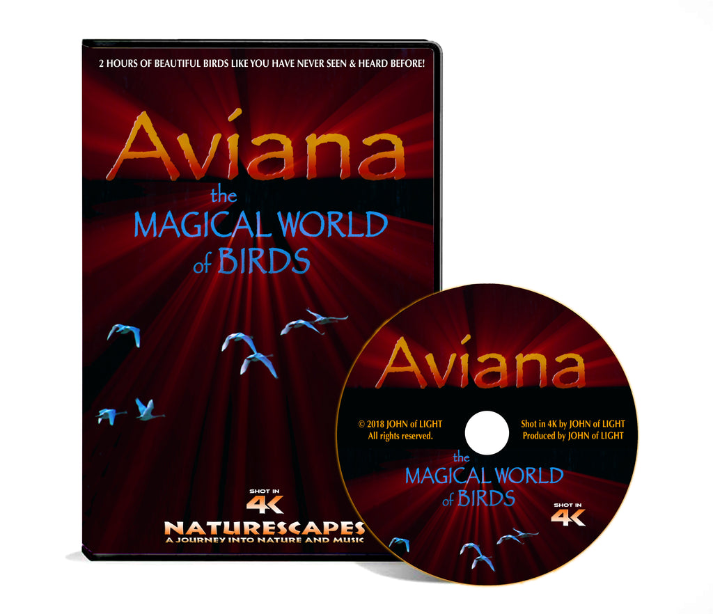 AVIANA - The Magical World of Birds