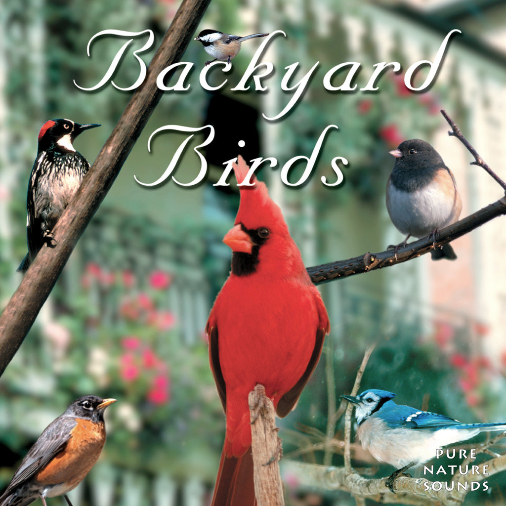 Backyard Birds - NATURESCAPES