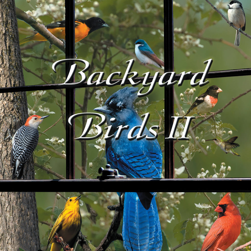 Backyard Birds II - NATURESCAPES