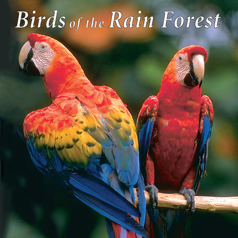 Birds of the Rain Forest - NATURESCAPES