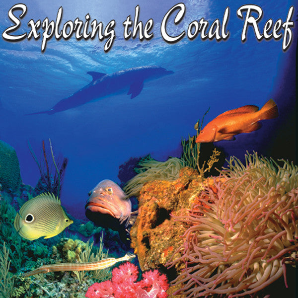 Exploring the Coral Reef - John of Light