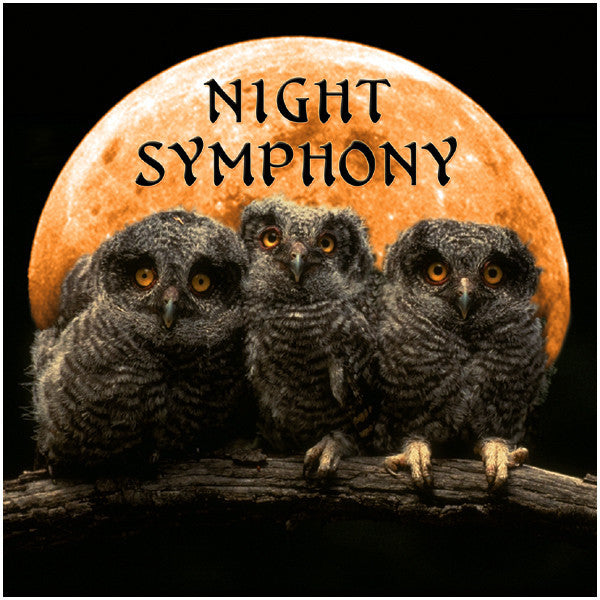 Night Symphony - Naturescapes Music
