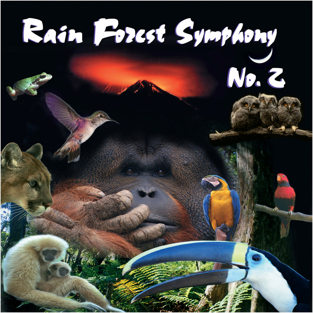 Rain Forest Symphony II - John of Light