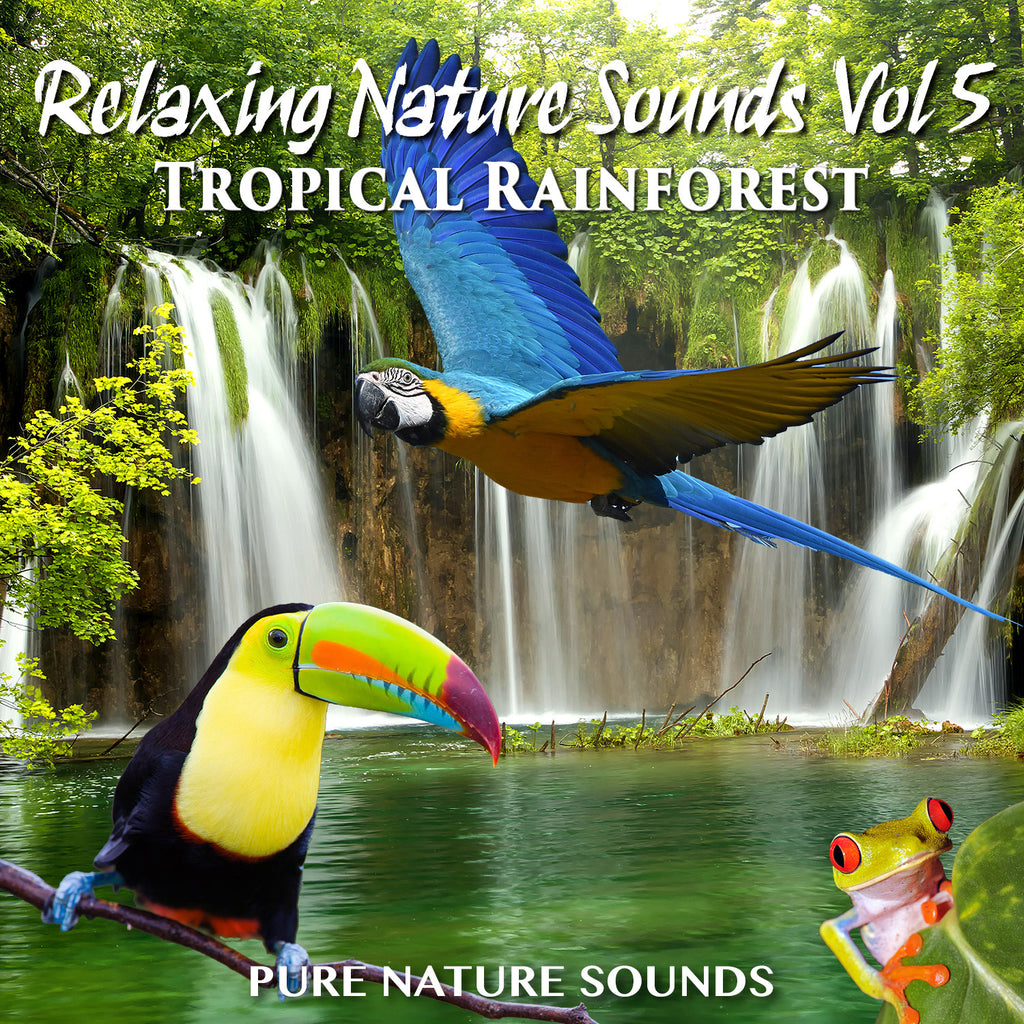 Relaxing Sounds of Nature V - TROPICAL RAINFOREST
