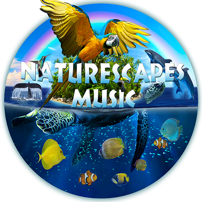 Naturescapes & Zenergy Music