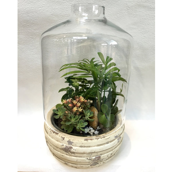 Tantalizing Terrariums