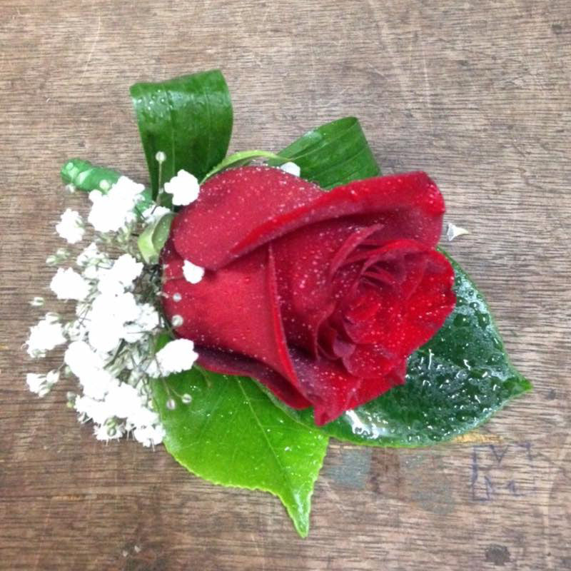 SW0028 - Red rose buttonhole