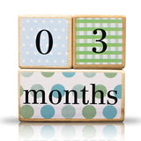 LovelySprouts Milestone Age Blocks, Neutral