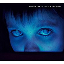 Porcupine Tree - Fear of a Blank Planet - 2LP