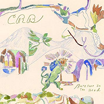 Chris Robinson Band - Barefoot in the Head - CD