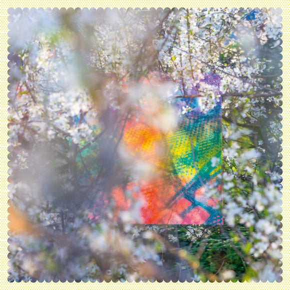 Four Tet - Sixteen Oceans - 2LP