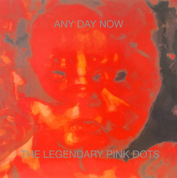 Legendary Pink Dots - Any Day Now - 2 LP