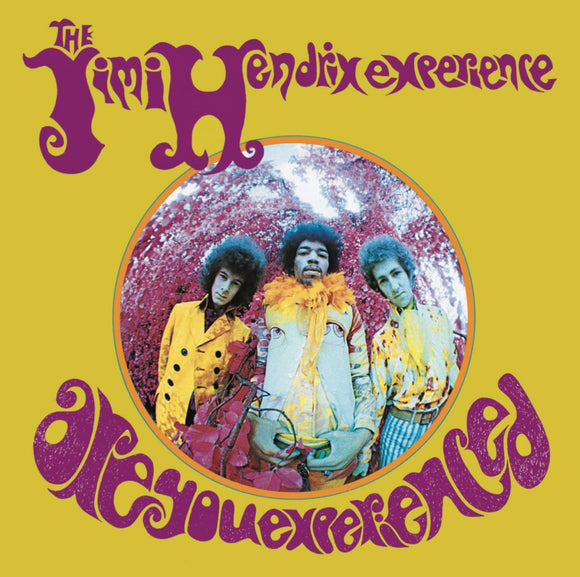 Jimi Hendrix - Are You Experienced - LP