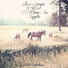 Bill Callahan - Sometimes I Wish We Were An Eagle - CD