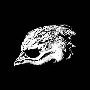 Legend Of The Seagullmen - S/T CD