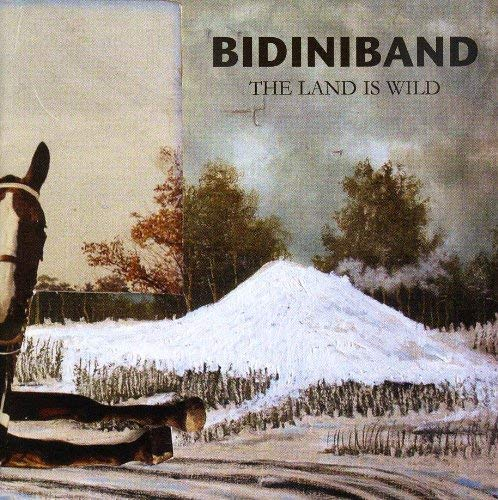 Bidiniband - The Land Is Wild - CD