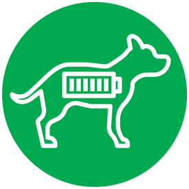 Icon of a dog with a battery in his body. The battery is full to signify lots of energy.