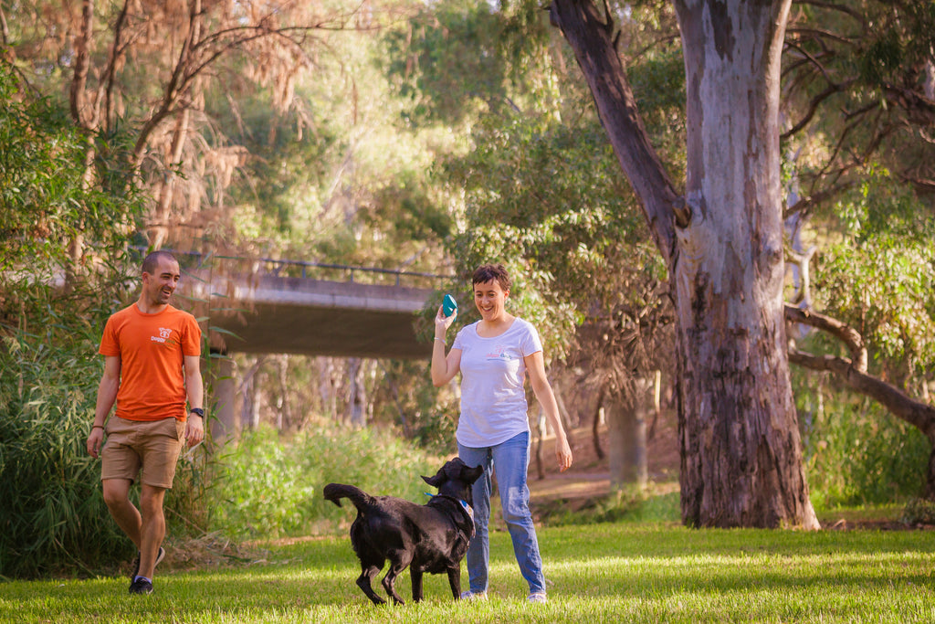 A man and a woman, founders of Doggy Grub, in a park with their black dog about to throw a ball