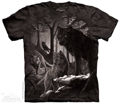 Dire Winter - T-Shirt - Moonstoneartwear