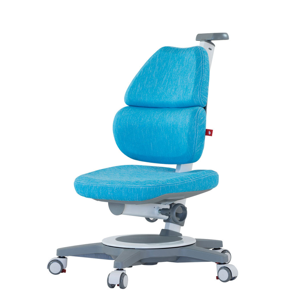 Ego - Adjustable Ergonomic Chair