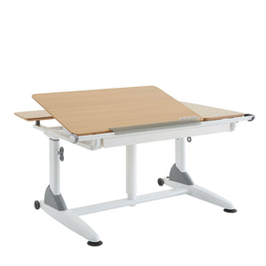 G6 S\L – Large Ergonomic Adjustable Table