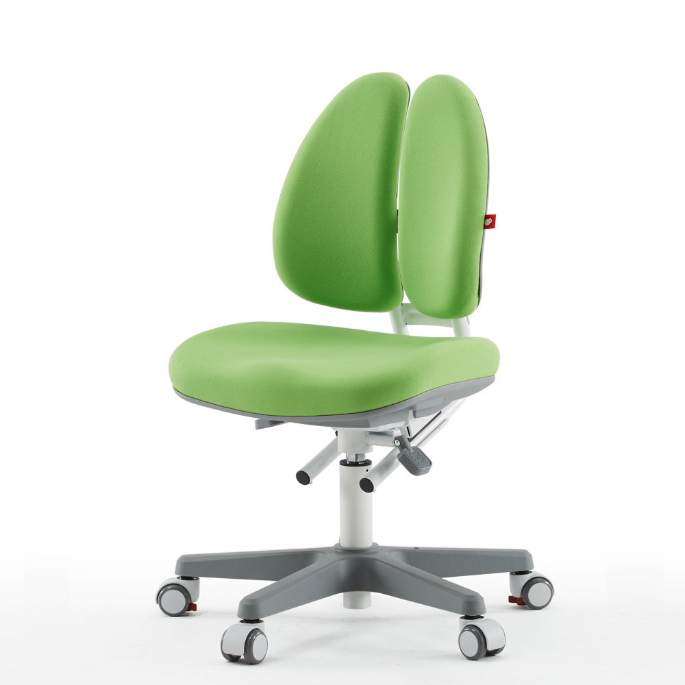 Duo Ergonomic Chair
