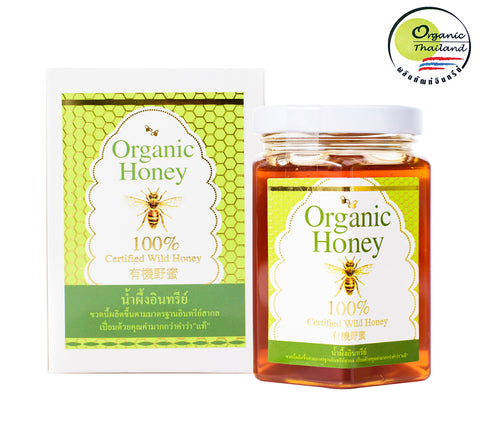 BigBee Thepprasit Organic Honey 100% Certified Wild Honey Mikania Flower (300gm)