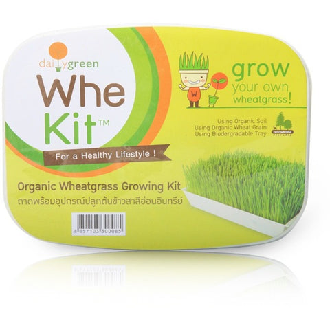 Daily Green Whe Kit Organic Wheatgrass Growing Kit