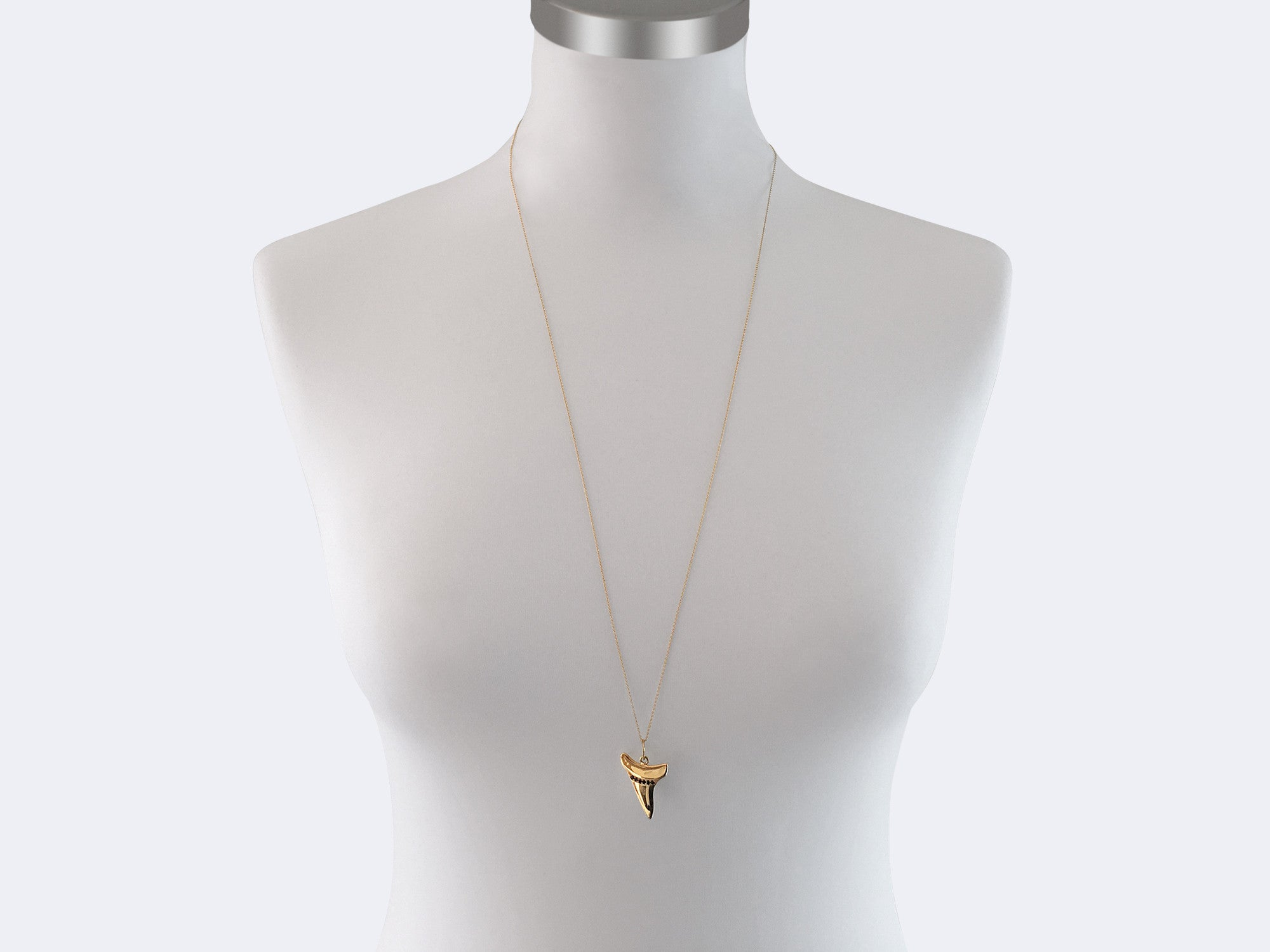 an jewelry sea hangs products embellished vermeil from oxidized a stone tooth necklace image gold pendant fossilized shark and