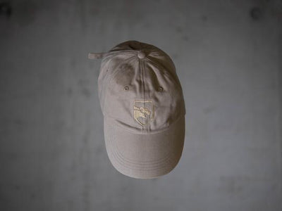 Shield Dad Hat