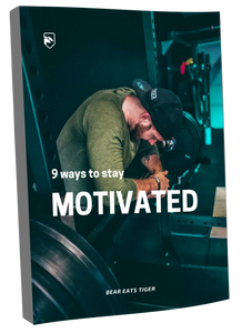 9 ways to stay motivated ebook beareatstiger bear eats tiger vincent de buysscher free ebook