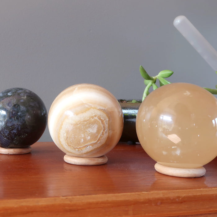 moss agate, aragonite, honey calcite spheres on wood display stands in front of succulents