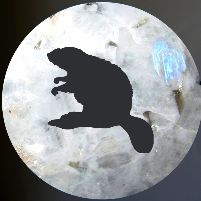 rainbow obsidian sphere with beaver silhouette representing the moon