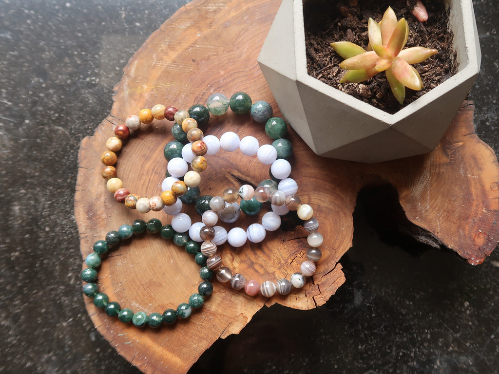 agate stretch bracelets and succulent plant