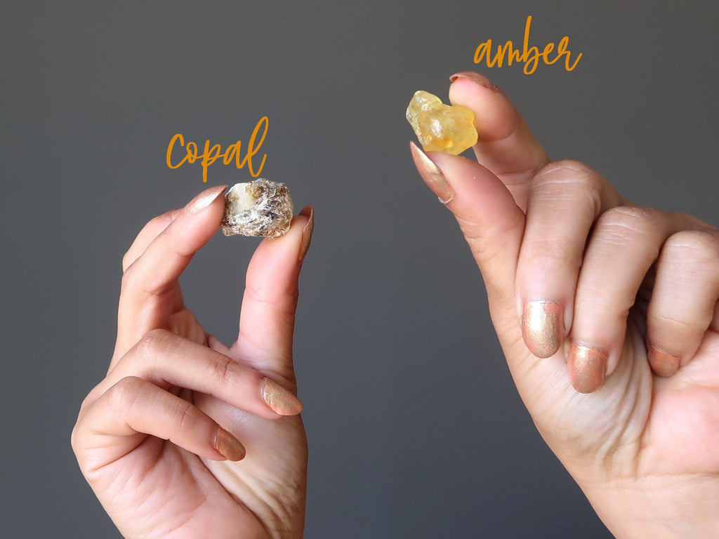 hands holding up a piece of copal and a piece of amber for testing