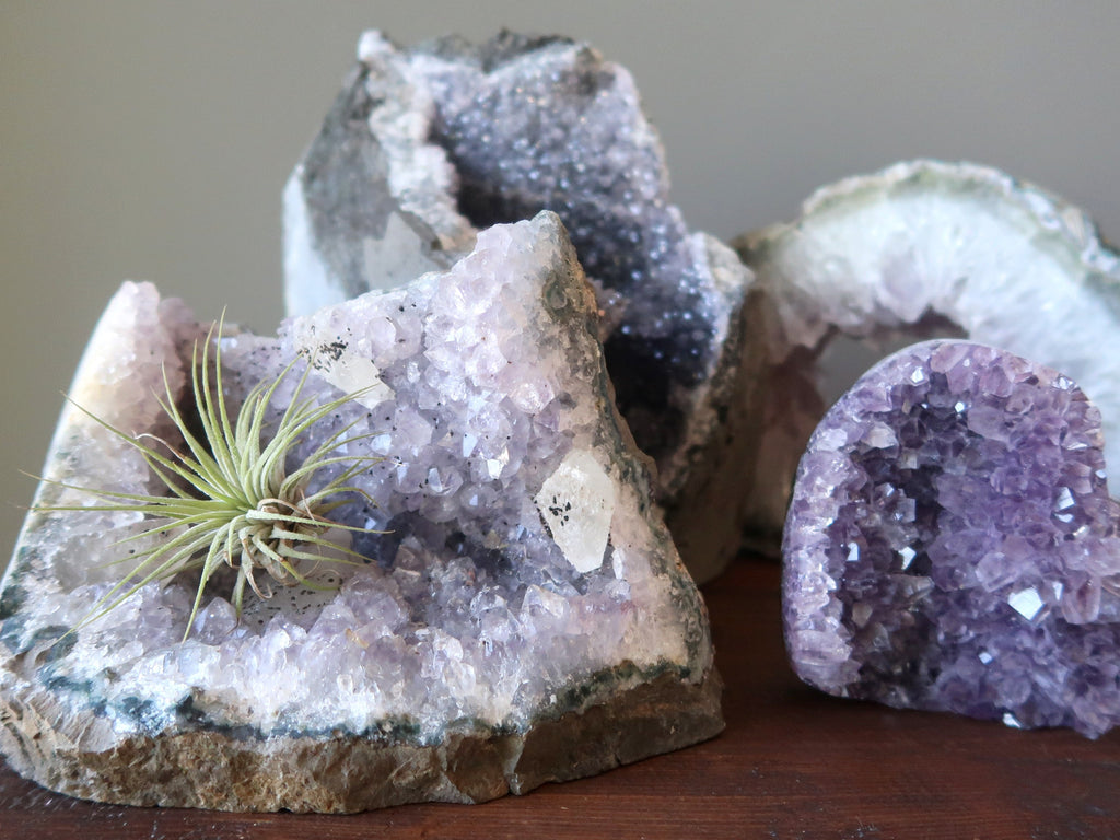 4 amethyst geodes and clusters and an air plant at satin crystals