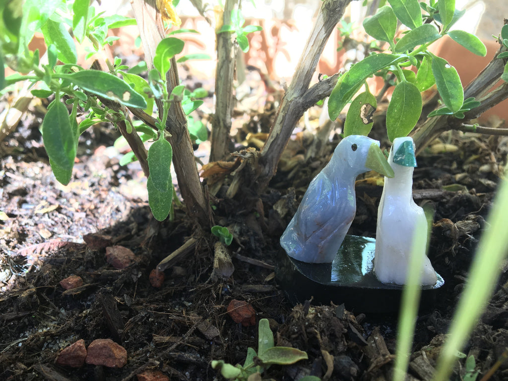 Crystal Birds in the Garden - Satin Crystals Blog