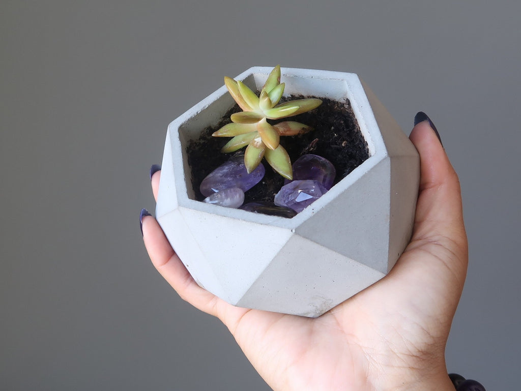 succulent in geometric planter with amethyst tumbled stones