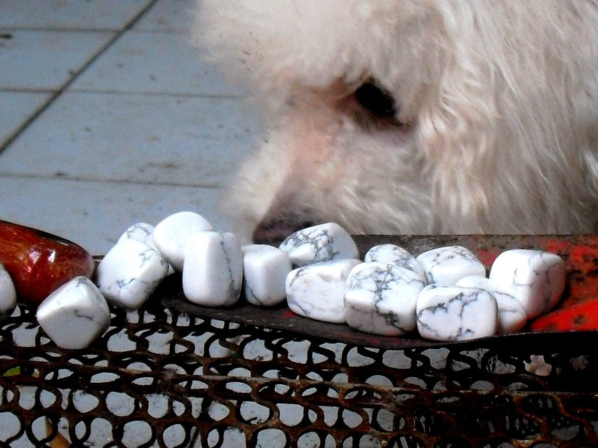 Howlite Article - Mineral Facts & Crystal Healing