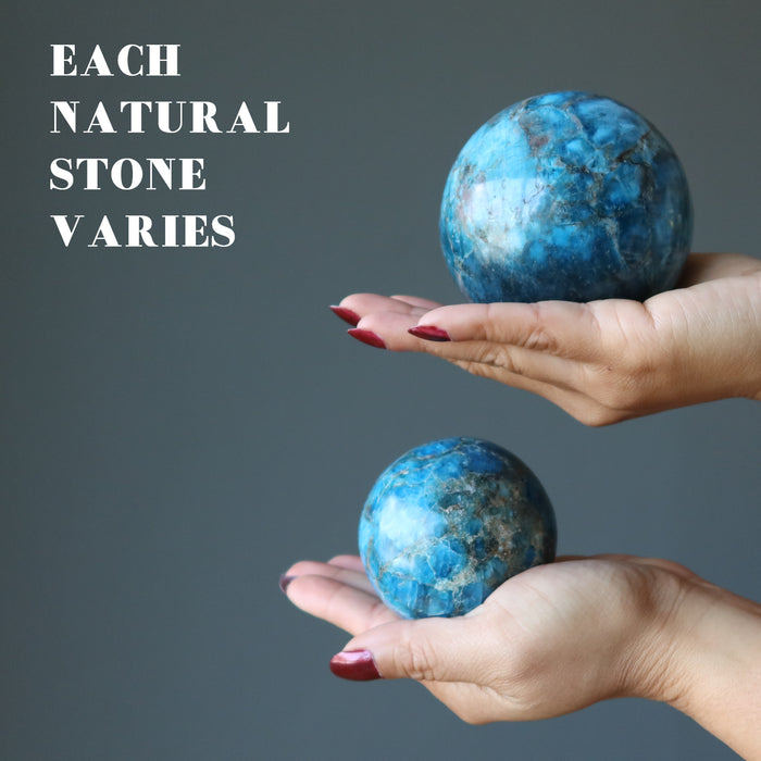 two hands holding apatite spheres in each palm showing each natural stone varies
