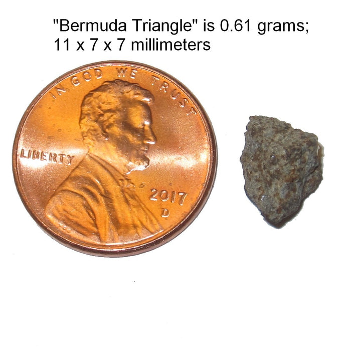 Satin Crystals chergach meteorite specimen next to a penny showing its 11 millimeter size