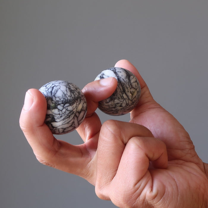 hand holding two chrysanthemum stones